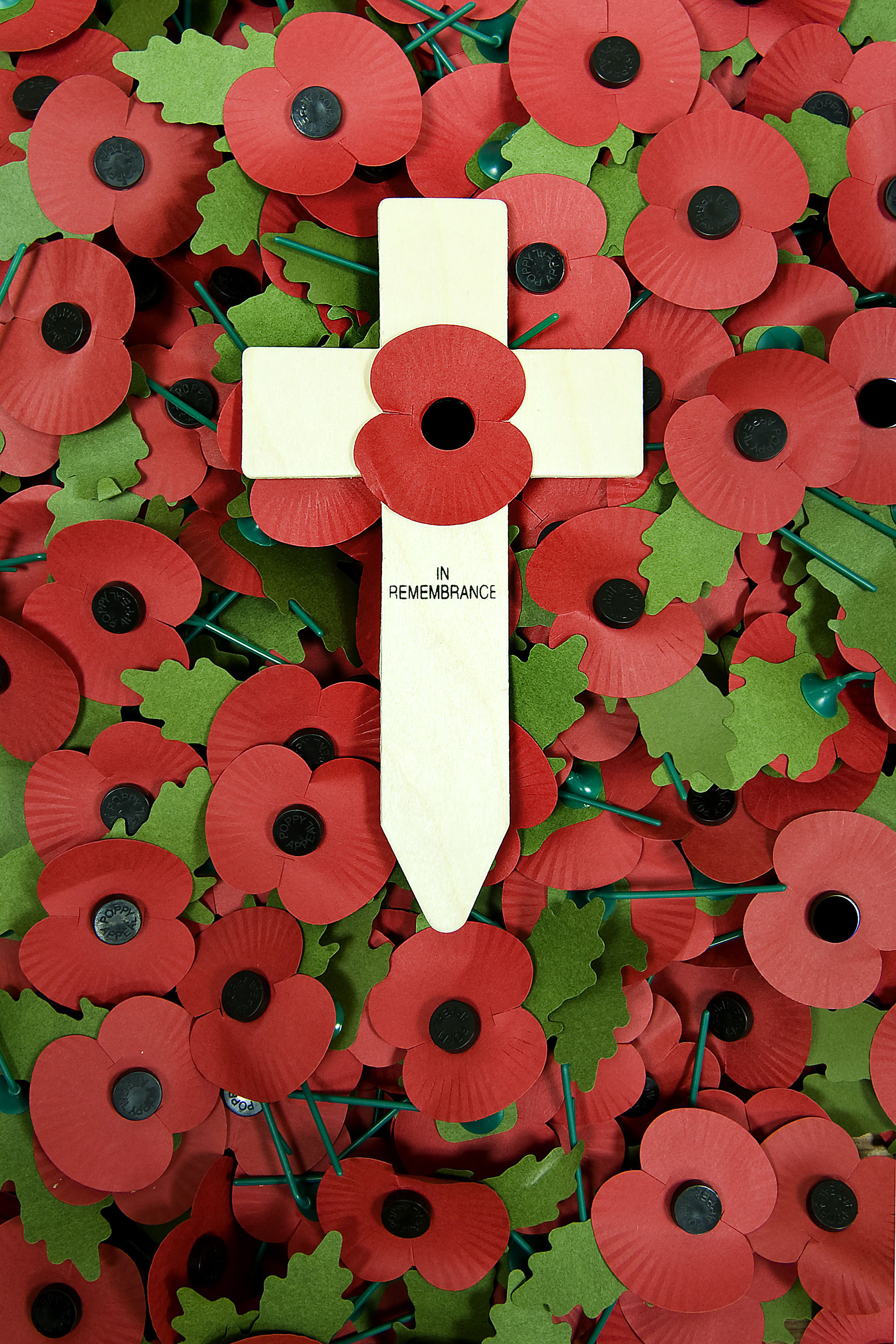 Remembrance_Cross_Laying_on_Poppies_MOD_45153382